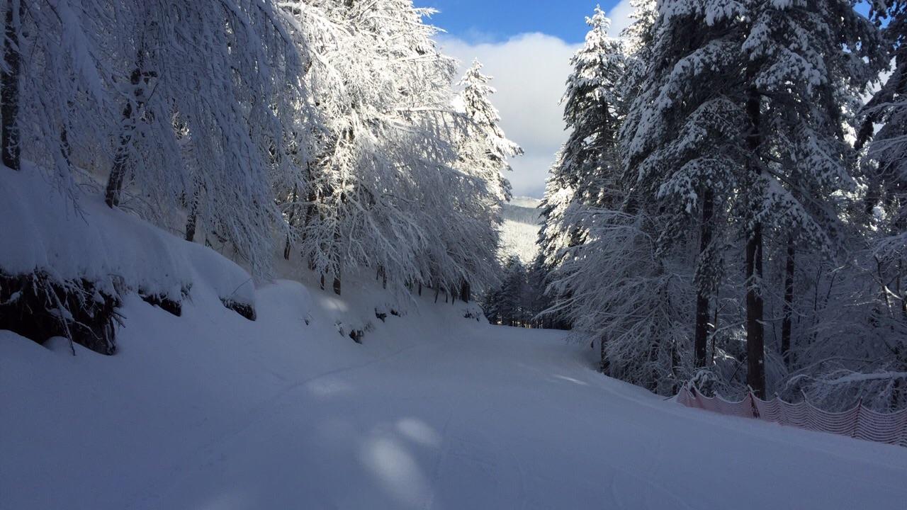 Imminente ritorno all'inverno