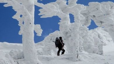 """Le meravigliose foto della """"calabrosa"""" del Monte Pollino"""