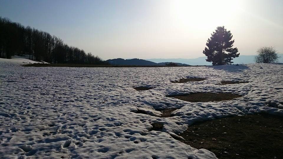 Il disgelo silano: le foto