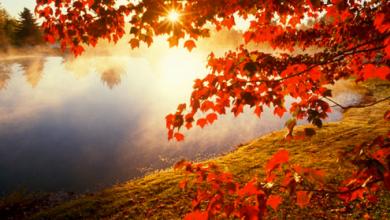 Calabria autunno sereno sole