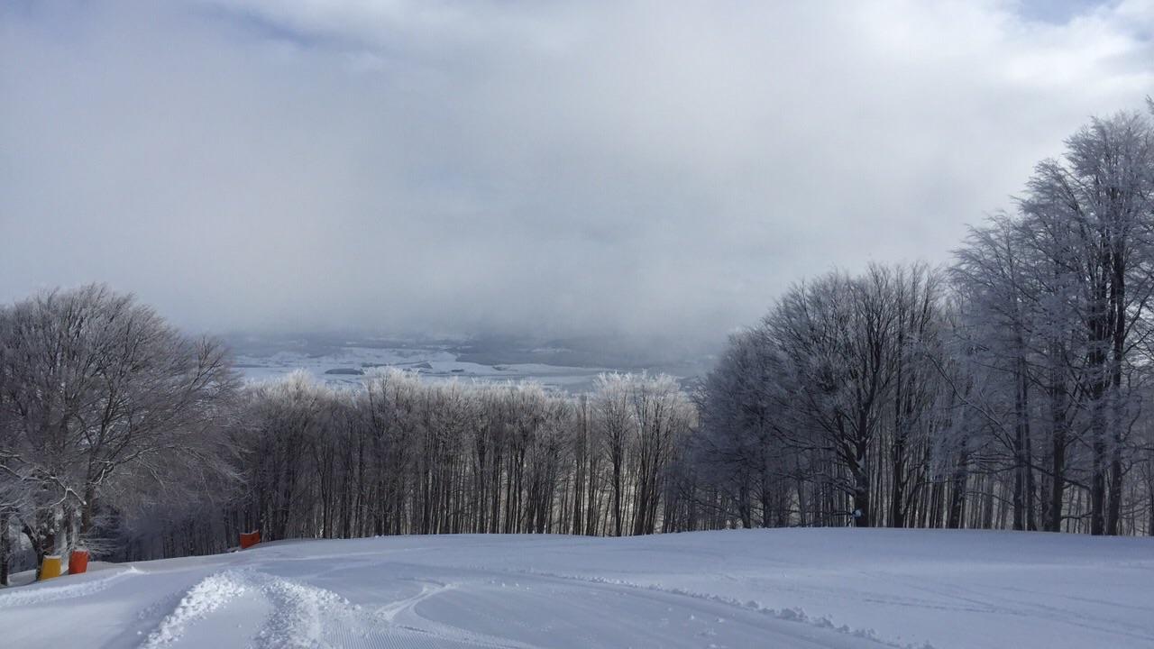 Venerdì: piogge diffuse, neve sui monti!