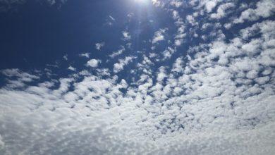 Uno sguardo a lungo termine: inverno rimandato?