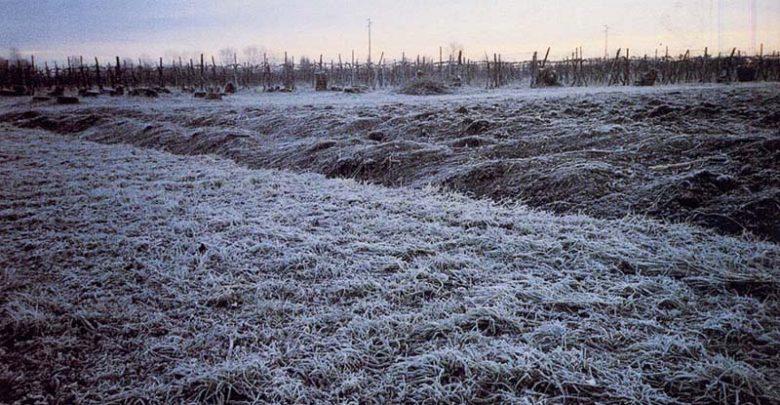 Domani freddo: temperature in deciso calo!