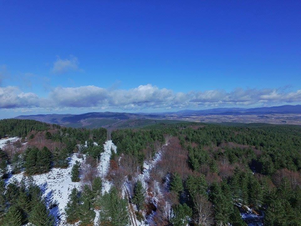 Resoconto della prima metà di gennaio 2016: ma è stato inverno, o una dolce primavera?