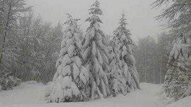 Calo termico in atto, torna la neve sui rilievi entro le prossime 12 ore