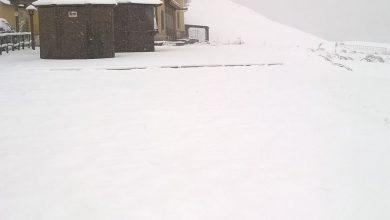 Nevicate moderate sul Pollino: le foto