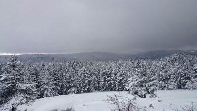 Le colline calabresi si svegliano con la neve!