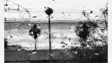 Torna la pioggia specie sui versanti tirrenici