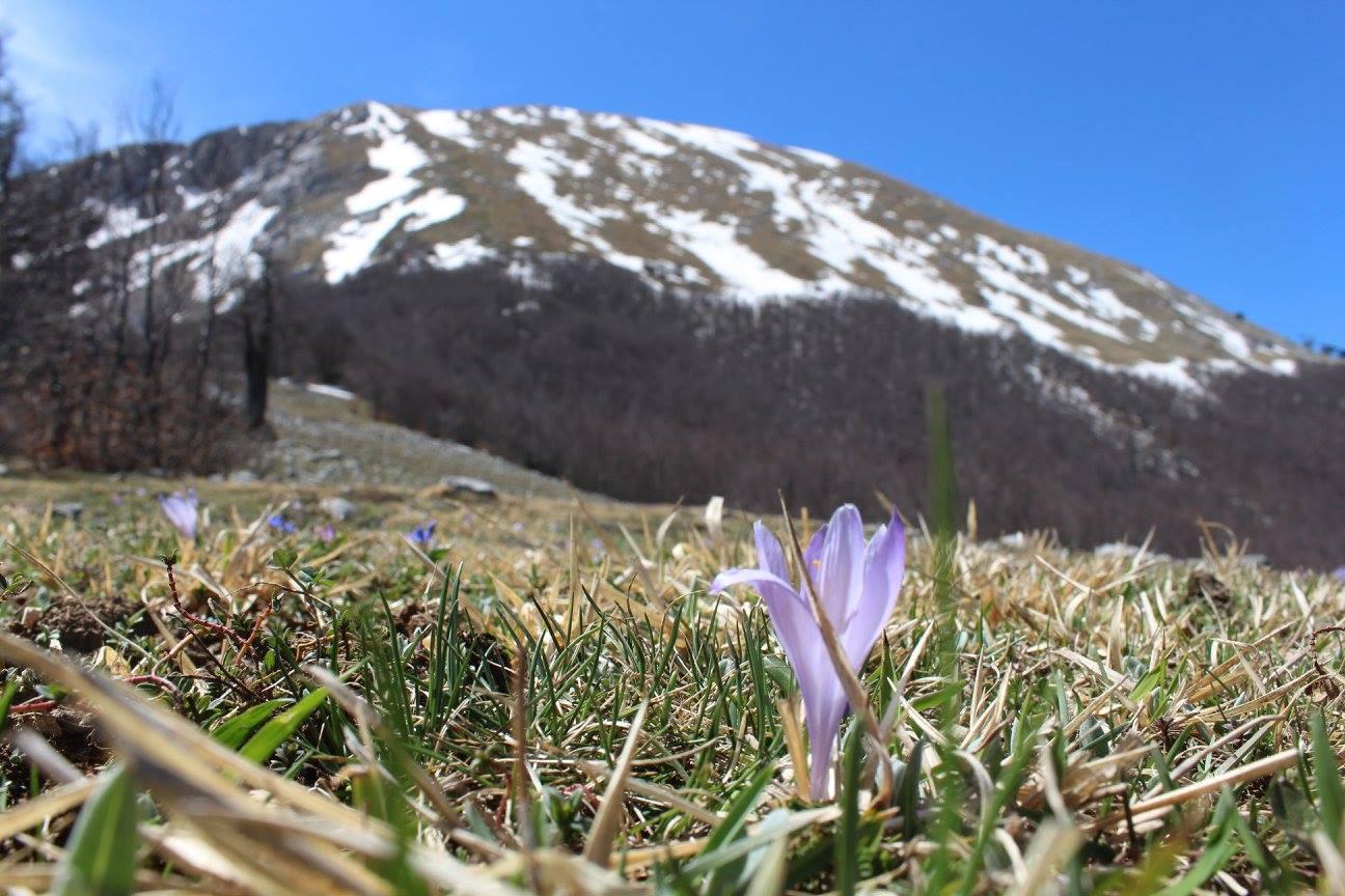 Resoconto climatico di Aprile 2016: l'ennesimo mese anomalo!