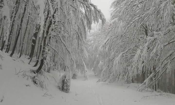 In arrivo la prima neve sui monti?!