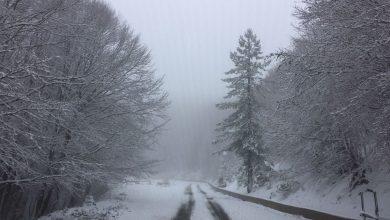 Vette Silane in veste invernali: le foto della prima vera nevicata!