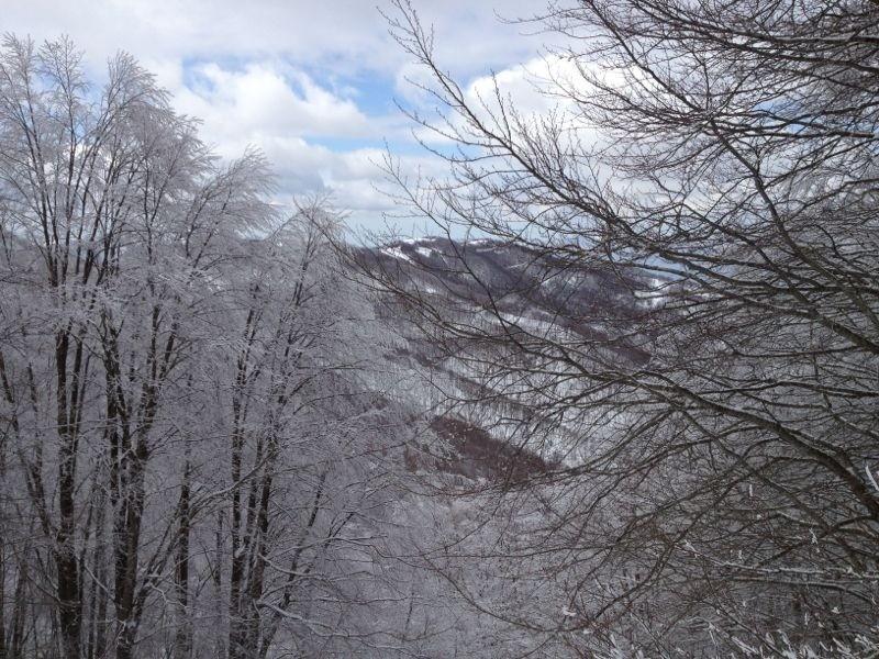 Meteo per la prossima settimana: prima neve sui monti calabresi? Prime conferme...