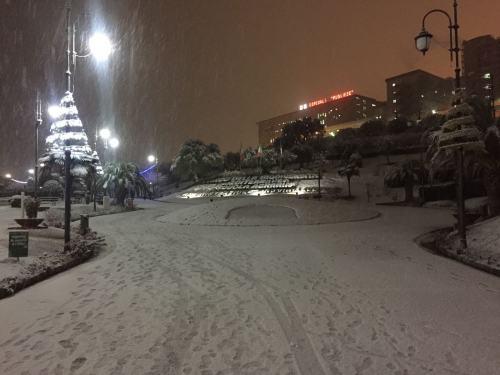 Nevica su mezza Calabria: Cosenza e Catanzaro imbiancate!