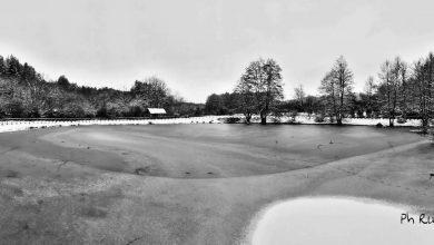 Perchè i laghi ghiacciano solo in superficie?