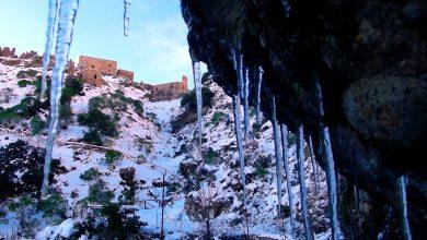 Resoconto inverno 16/17: gennaio con GELO STORICO, il resto anonimo...(dati e foto)
