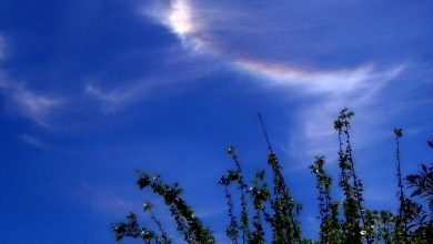 Nubi iridescenti sui cieli calabresi: cosa sono?