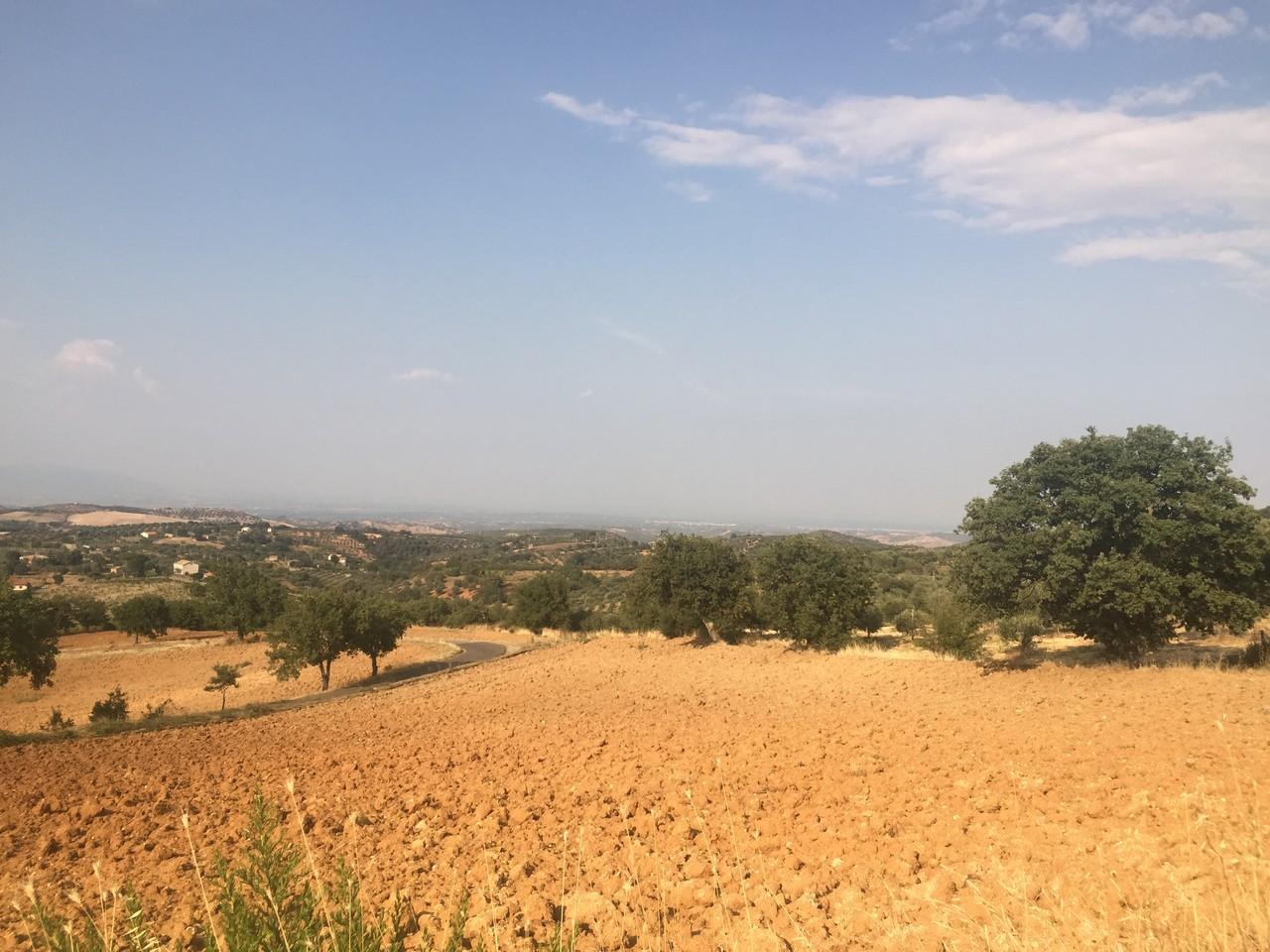 Resoconto della primavera 2017 in Calabria: ancora caldo e secco ad oltranza quasi ovunque...