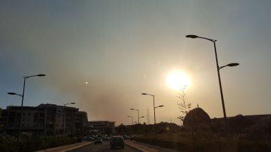 Prima metà di luglio 2017: molto caldo e secco, mentre gli incendi interessano migliaia di ettari!