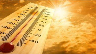Mercoledì 12 luglio: SUPERATI I 41°! ....aggiornamenti live...