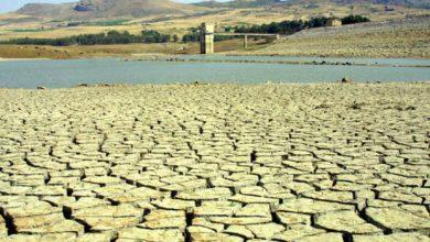 Siccità in Calabria: ad agosto situazione in ulteriore peggioramento. Ecco i dati.