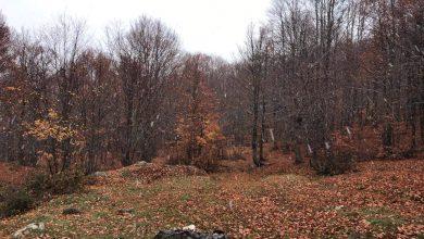 Arriva l'aria fredda: GRANDINATE e primi FIOCCHI di NEVE sui monti!