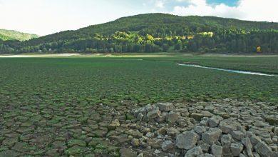 Situazione siccità a SETTEMBRE: piogge ancora insufficienti a risolvere il problema...