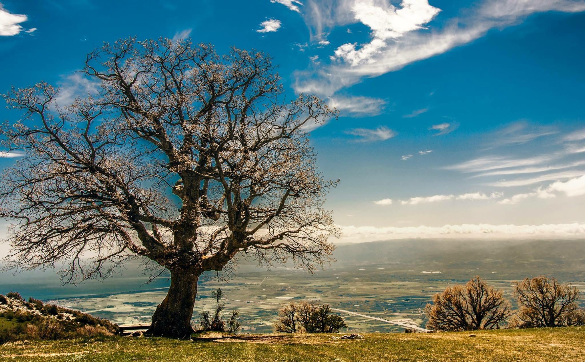 Meteo di martedì e mercoledì: anticiclone alla conquista della Calabria, ma ancora possibili deboli fenomeni instabili...