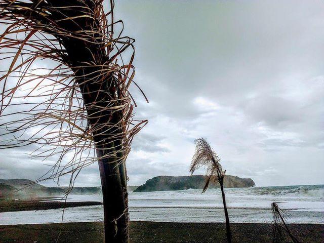 Marzo 2018: secondo mese di fila piovoso, ma abbastanza mite.