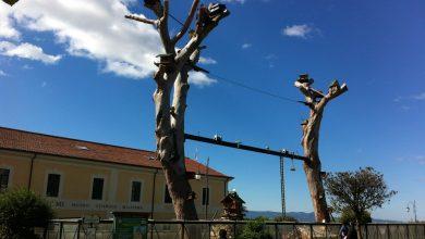 meteo di venerdi e sabato: continua il bel tempo con locali deboli disturbi