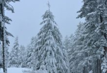 Giovedì piogge, freddo e neve fino a quote collinari, forse fino a Cosenza ma il condizionale è d'obbligo