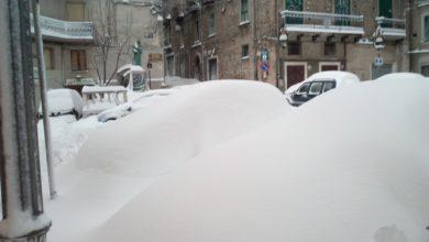 Sila Greca, risveglio sotto una spessa coltre nevosa: le foto più belle