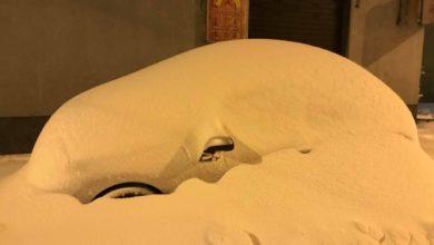 Resoconto climatico di febbraio 2019: localmente un po' più caldo e molto secco, ma con un evento nevoso di rilievo