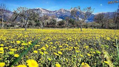 Prosegue la fase stabile e mite sulla Calabria