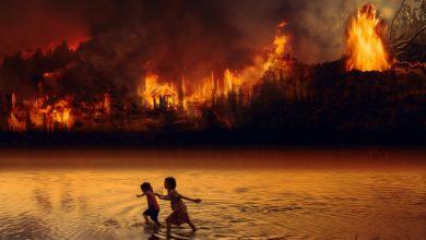 incendi amazzonia
