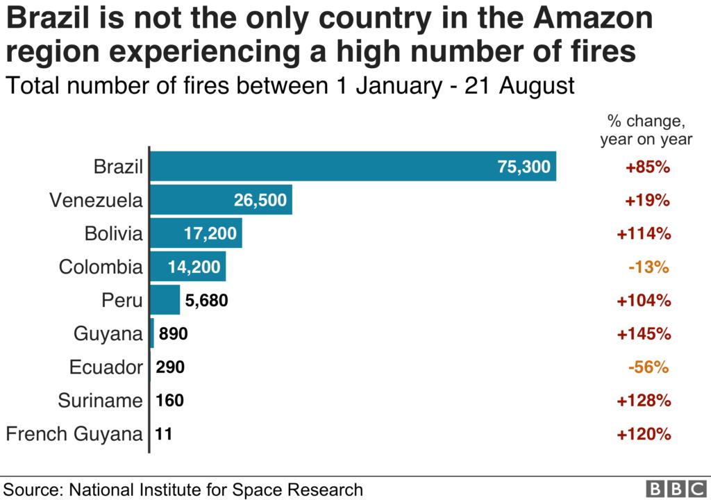 incremento numero di incendi foresta amazzonica per stato