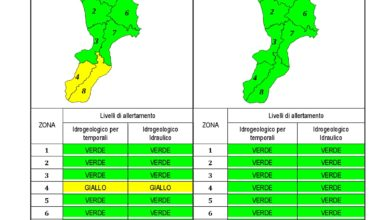 Criticità idrogeologica-idraulica e temporali in Calabria 06-12-2019