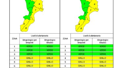 Criticità idrogeologica-idraulica e temporali in Calabria 10-12-2019
