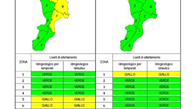 Criticità idrogeologica-idraulica e temporali in Calabria 11-12-2019