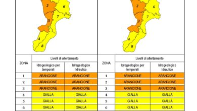 Criticità idrogeologica-idraulica e temporali in Calabria 21-12-2019