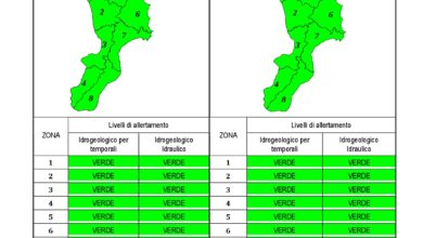 Criticità idrogeologica-idraulica e temporali in Calabria 20-01-2020