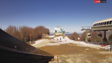 Monte Curcio sila calabria gennaio 2020 secco