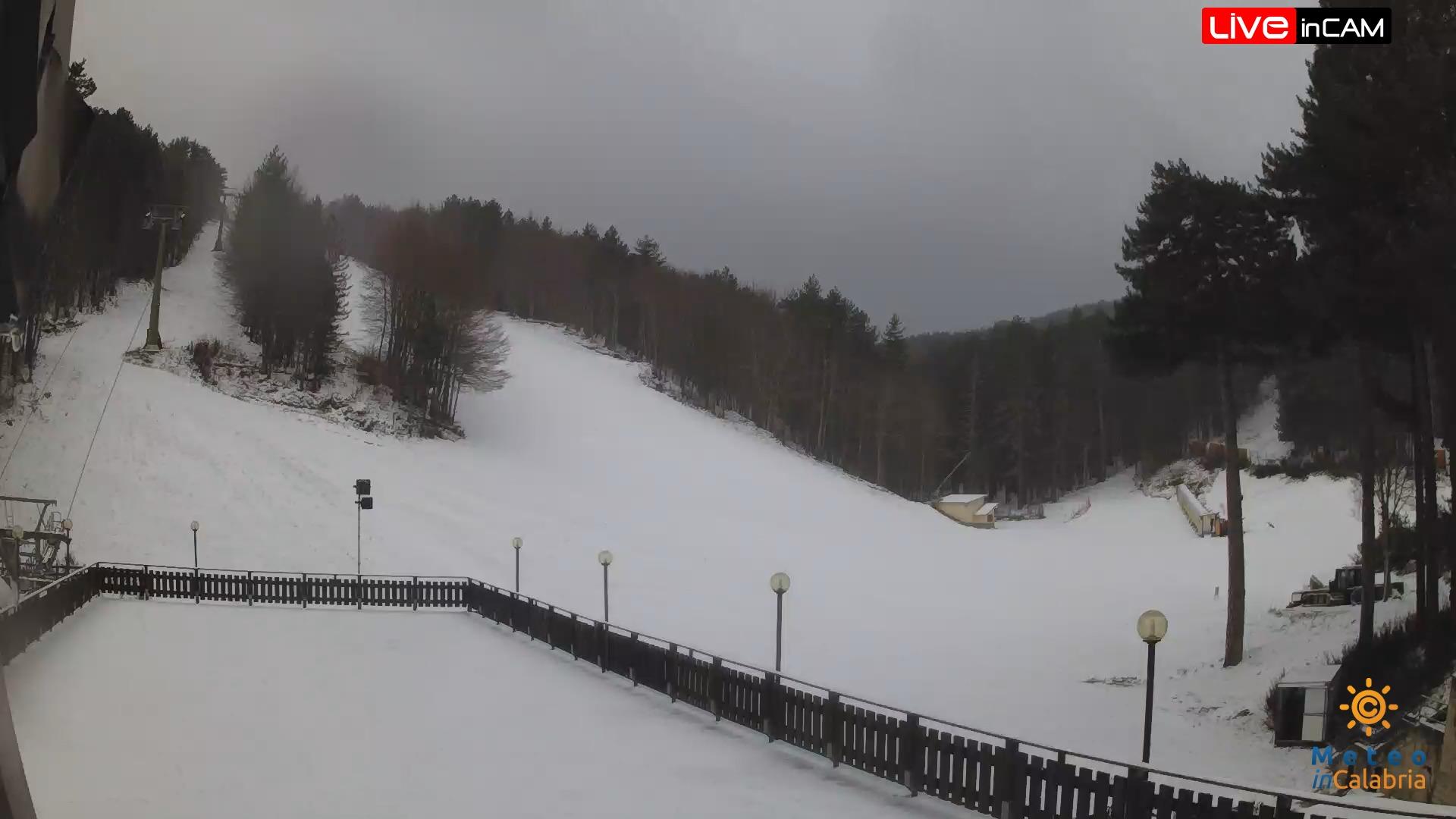 webcam camigliatello neve