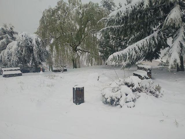 Domanico neve 25 marzo 2020