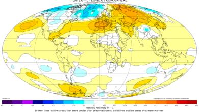 mappa anomalie temperature globali da satellite febbraio 2020