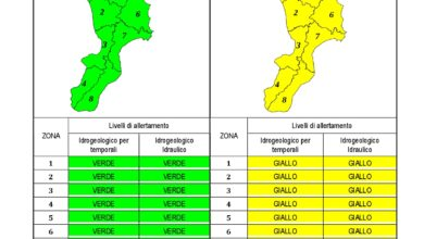 Criticità idrogeologica-idraulica e temporali in Calabria 20-04-2020