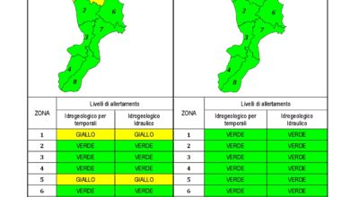 Criticità idrogeologica-idraulica e temporali in Calabria 10-01-2021