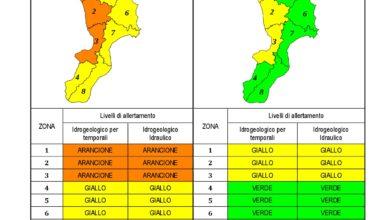 Criticità idrogeologica-idraulica e temporali in Calabria 24-01-2021
