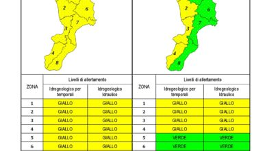 Criticità idrogeologica-idraulica e temporali in Calabria 01-02-2021