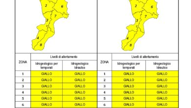 Criticità idrogeologica-idraulica e temporali in Calabria 10-06-2021